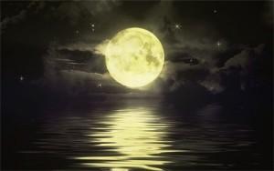 volle maan 2